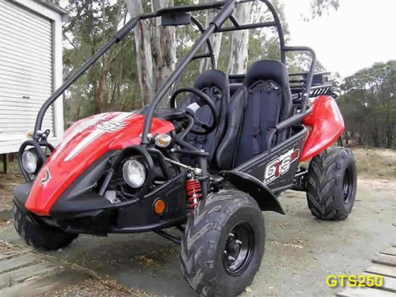 Goulburn Off Road Carts - Twister Hammerhead Carts & Generator Sales